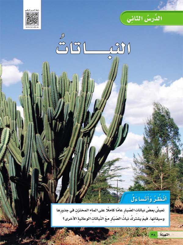 الدرس الثاني النباتات