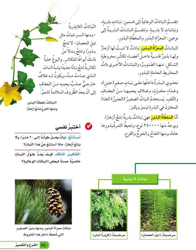 تابع كيف تصنف النباتات؟