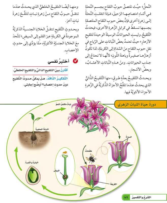 تابع ما دورة حياة النبات الزهري؟