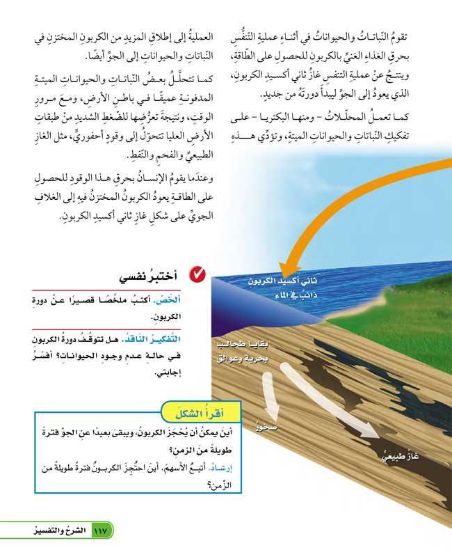 تابع ما دورة الكربون؟