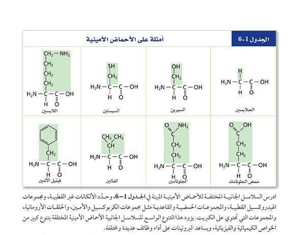 الجدول1-6