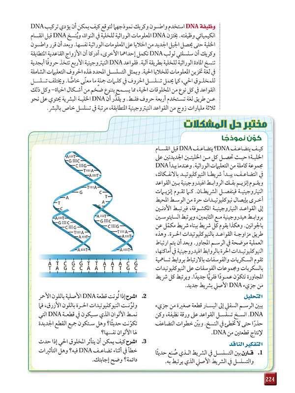 وظيفة DNA   مختبر حل المشكلات