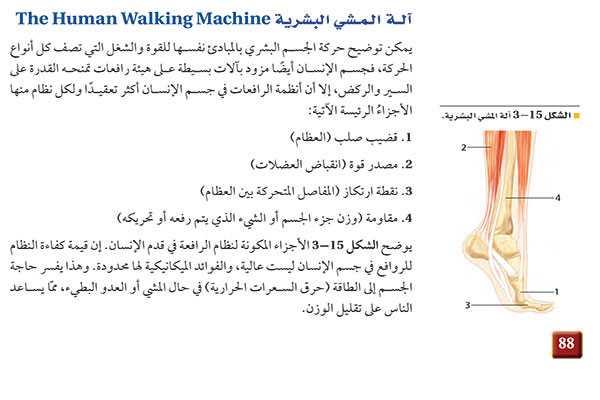 آلة المشي البشري